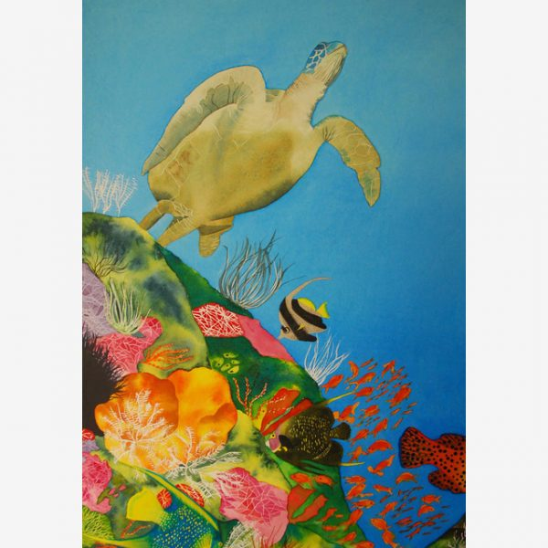 Turtle Gliding Over Bommey Original Watercolours by Carolyn Judge Square