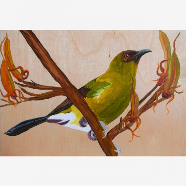 Bellbird on flax Original Ink on Wood by Carolyn Judge Square