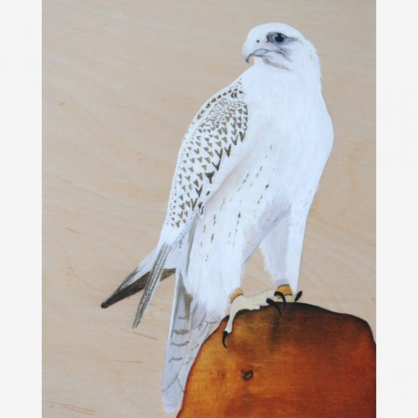 White Falcon Original Ink on Wood by Carolyn Judge Square